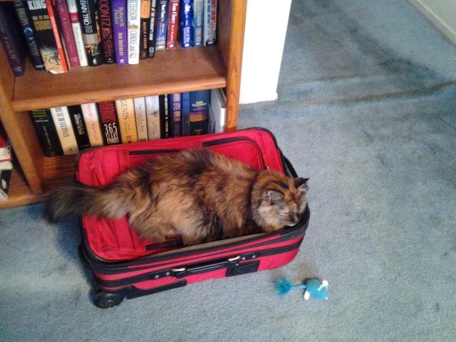 Sudoku ready to travel