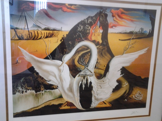 Dali swan